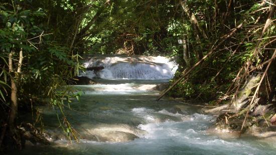 Fabian Tours: Mayfield Falls