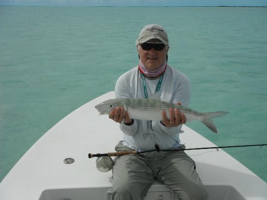 Mangrove Cay Inn: fish