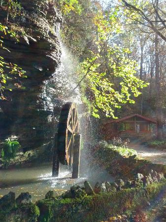 Tennessee Fitness Spa: The water wheel and afternoon sun
