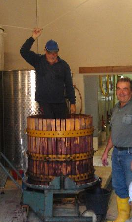 Tuscan Wine Tours with Angie: Yes he is stomping grapes!