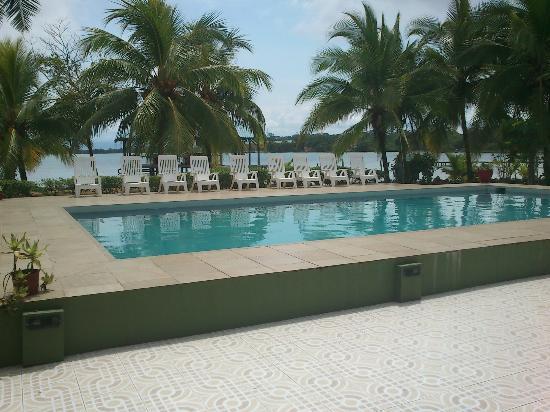 Pukalani Hostal: Es una alberca super cómoda y con vista al mar a la sombra de unas palmeras!