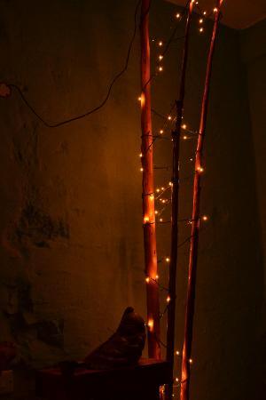 Butterfly Houses: Room Lighting