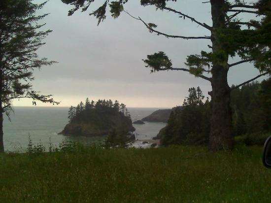Overlooking College Cove
