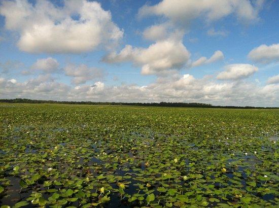 Marsh Landing Adventures: The scenery was amazing...