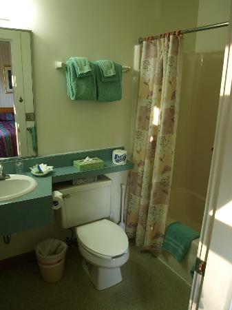 Stowe Motel & Snowdrift: Bathroom