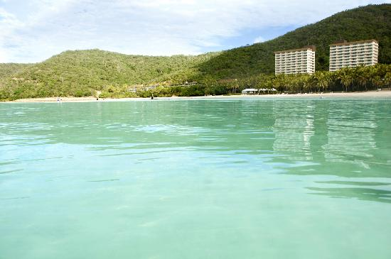 Whitsunday Apartments Hamilton Island: See 617 Hotel ...
