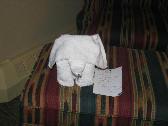 ‪دلتا لودج آت كاناناسكيس: Housekeeper created thie elephant for my stay!