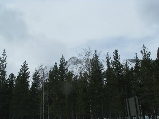 Delta Lodge at Kananaskis: Outside view 1