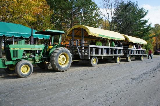 Johnston's Cranberry Marsh & Muskoka Lakes Winery: Wagon Ride