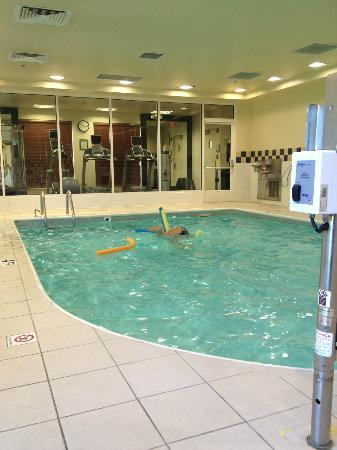 Hilton Garden Inn Danbury: Pool