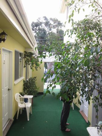 Catalina Lodge: Looking from the room to the street-small courtyard