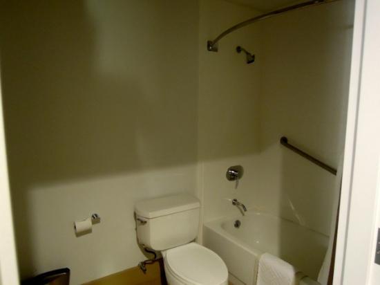 Hilton San Jose: シャワーは固定式