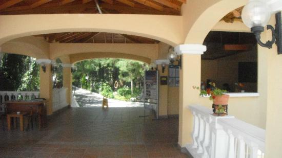 Pine Club: Hotel & grounds