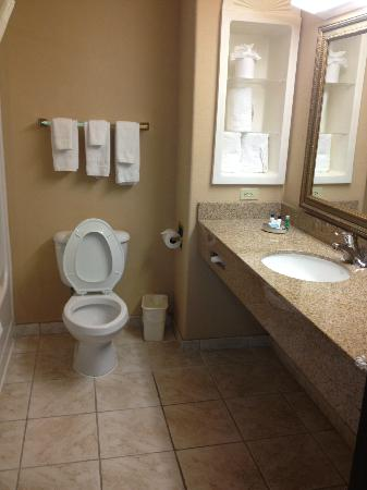Best Western Plus The Woodlands: bathroom