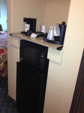 Best Western Plus The Woodlands: frig/micorwave