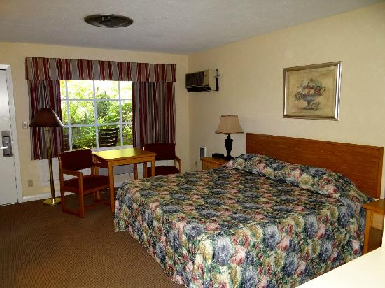 Village Green Resort: King Pet Friendly Room