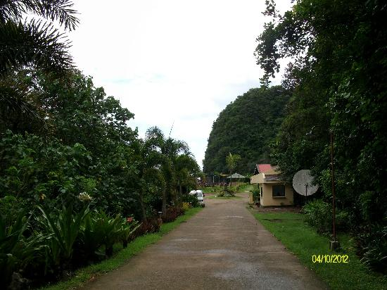 ‪‪Gota Village Resort‬: The path going to the beach.