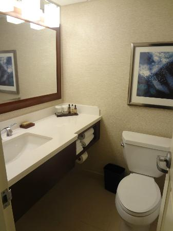 Chicago Marriott O'Hare: Bathroom - small but very clean