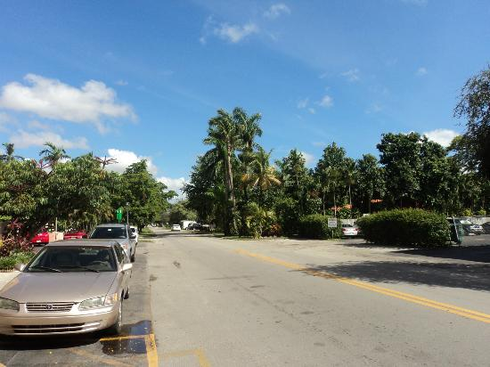 Runway Inn: Vista desde el hotel hacia la calle