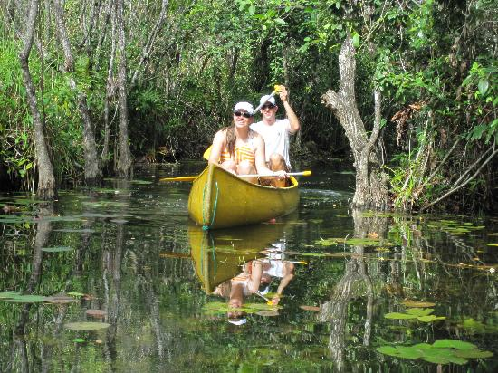 Riviera Adventours: Canoeing in through the forrest