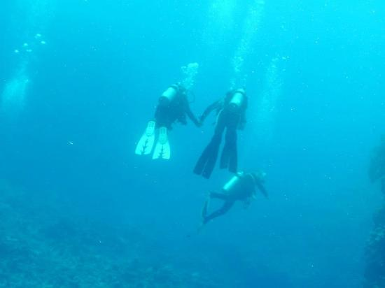Mai Dive - Astrolabe Reef Resort: Diving together