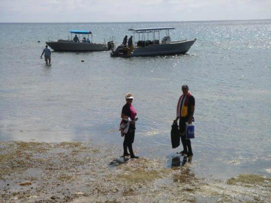 阿斯特罗拉珊瑚礁潜水度假酒店照片