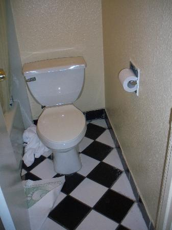 Imperial Inn: Spacious bathroom