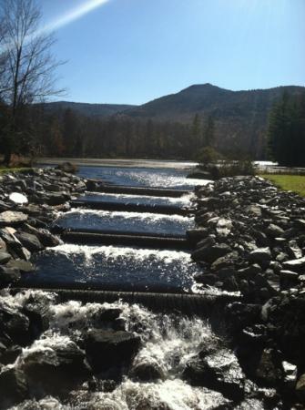 Leffert's Pond: Dam