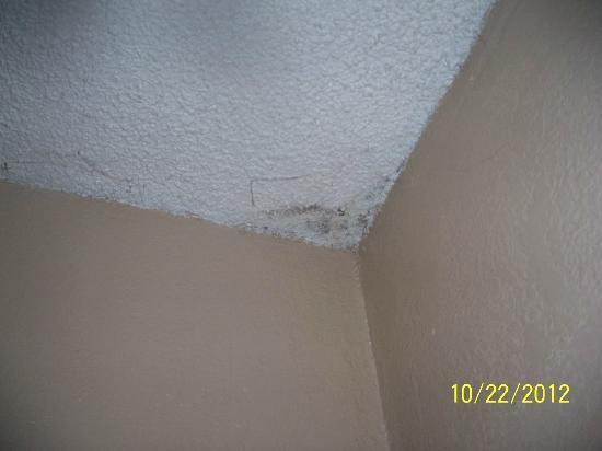 Anaheim Executive Inn & Suites: Mold on the ceiling.
