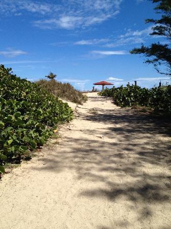 Parador Villas del Mar Hau: Hacia el Pozo de Jacinto