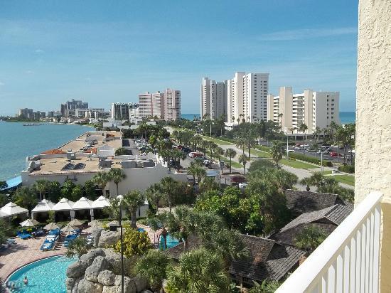 Looking North Towards Clearwater Beach Florida 8th Floor