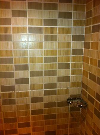 Hilton Pyramids Golf: Mold in shower