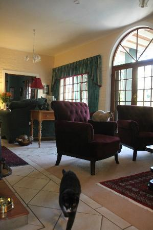 Edenwood Guest House: Living room with my favourite black cat!