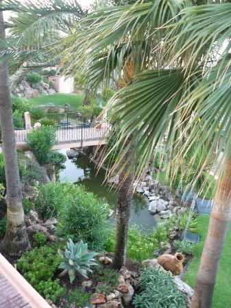 The Dona Lola Club: Gardens