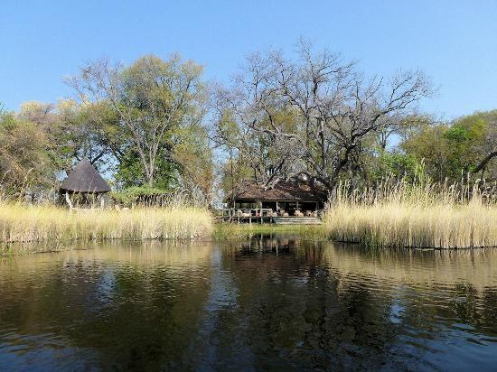 Camp Xakanaxa: View from the river boat