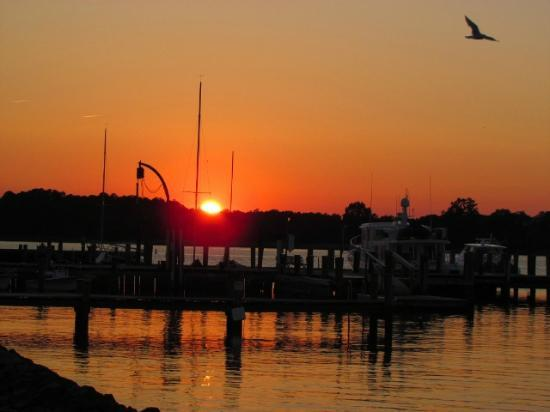 Sunset over the Oxford Marina, just across the road from the Robert Morris Inn