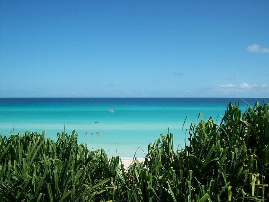 Varadero Beach: 23