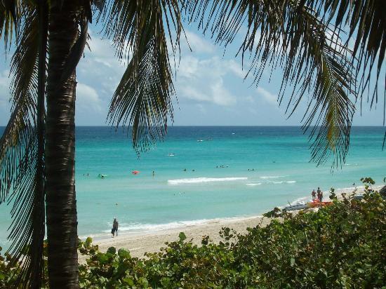 Varadero Beach: 24