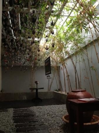 South Sea Sanctuary: the zen garden
