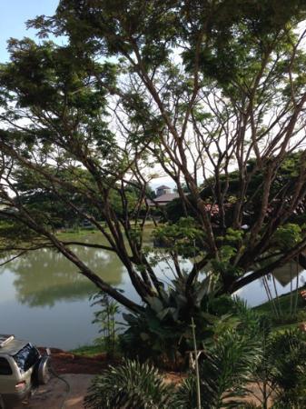 Kong Garden View Resort Chiang Rai: ons uitzicht