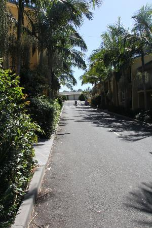 Photo of Oasis Holiday Apartments Port Macquarie