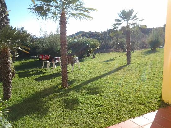 Hotel Baia Cristal: almost personal garden