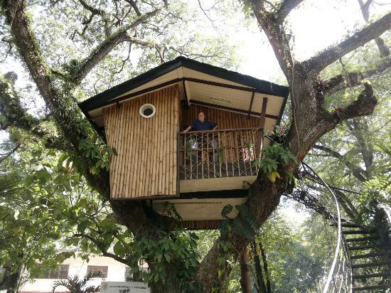 The Tree House in Pasonanca Park, one of Zamboanga City's icons.