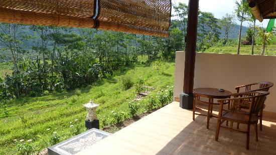 Arta Nadi Villa: Terrasse