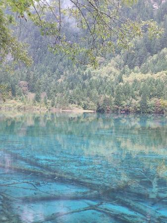 Jiuzhaigou Natural Reserve: amazing colours of the lakes