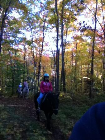 Algonquin Highlands Trail Riding & Farm: riding in the fall colors