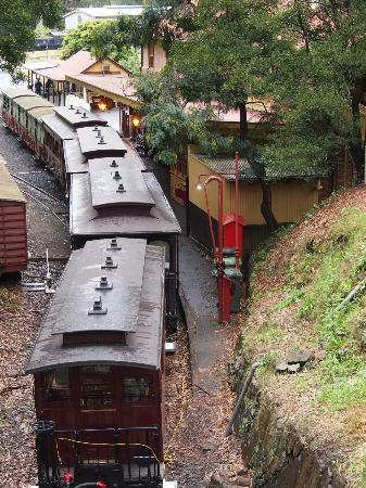 Puffing Billy Railway: View of the train from main station ramp