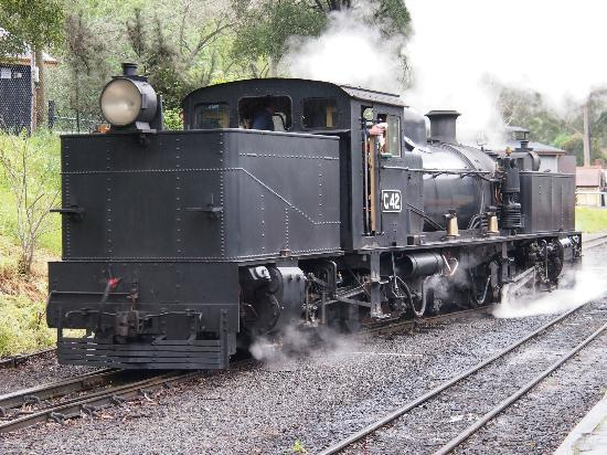 Puffing Billy Railway: Love the steam!