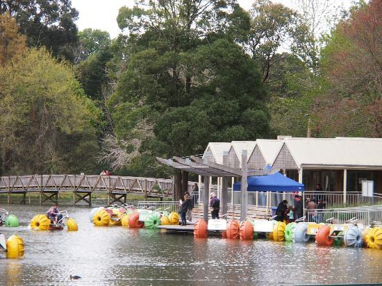 Puffing Billy Railway: Lakeside