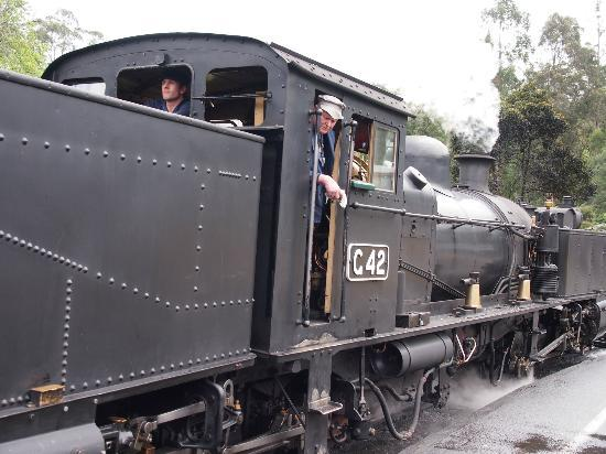 Puffing Billy Railway: Just another snap of the train!